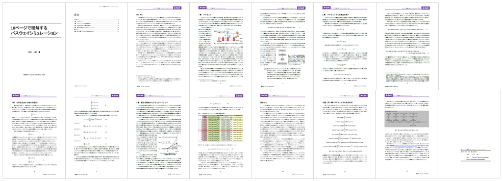 10pages_Pathway